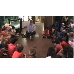 Camp Video