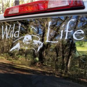 Wild Life® brand decals